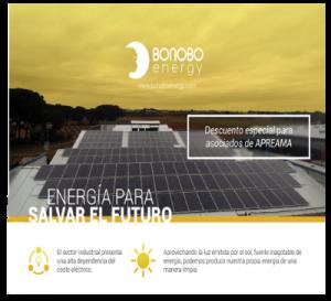 Bonobo Energy